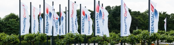 Brenntag Flags