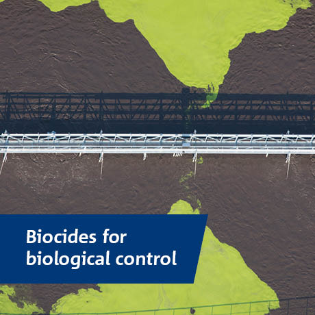 Brenntag's Biocides for Biological Control